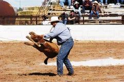 De actie van de rodeo Stock Foto