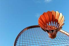 De Actie van het badminton Royalty-vrije Stock Foto's
