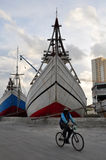 De activiteit van de havenarbeid in haven Royalty-vrije Stock Foto's