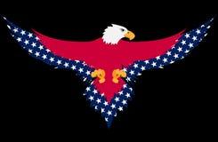 De adelaar van de V.S. Stock Foto's
