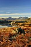 De adelaarsvaren van de winter, Llynnau Mymbyr Stock Afbeeldingen