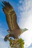De adelaarsvierkant van Langkawi royalty-vrije stock fotografie
