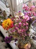 De adem van de zomer en de herfst, bloemen in geheugen stock afbeeldingen