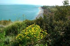 De Adriatische kust van Italys Royalty-vrije Stock Foto's
