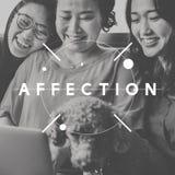 De affectie aanbidt Emotie zoals het Concept van de liefdehartstocht Stock Fotografie