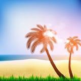 De Affiche van het de zomerstrand met palm Royalty-vrije Stock Foto