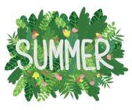 De affiche van de zomerbladeren Stock Foto's