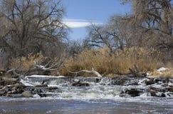 De afleidingsactiedam van de rivier met een logboekjam Royalty-vrije Stock Foto