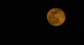De afnemende gibbous maan van april Stock Afbeelding