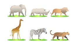 De Afrikaanse vectorreeks van het dierenbeeldverhaal olifant, rinoceros, giraf, jachtluipaard, zebra, leeuw safari geïsoleerde il vector illustratie