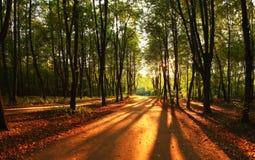 In de afstand: zonsondergangzon Royalty-vrije Stock Foto