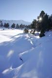De afwijkingen van de sneeuw in de bergen van Alpen stock fotografie
