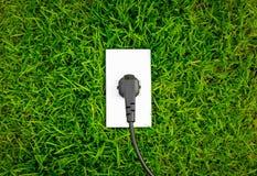 De afzet van het energieconcept in de verse groene lente Stock Foto's