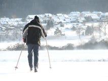 De agent van de ski royalty-vrije stock foto