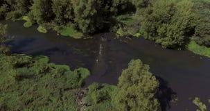 De agenten in rivier in duurzaamheid rennen Luchtlengte 4k stock videobeelden