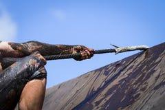 De agenten van het modderras, die hindernissen verslaan door kabel te gebruiken royalty-vrije stock afbeelding