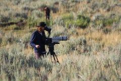 10 de agosto de 2014 o homem da câmera do parque nacional de Yellowstone fotografa o bisonte com Canon e vermelho um Foto de Stock Royalty Free