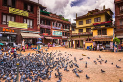 18 de agosto de 2014 - pássaros no Boudhanath em Kathmandu, Nepal Imagens de Stock Royalty Free