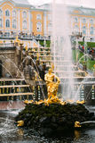 5 de agosto de 2016, St Petersburg, Rússia - Samson Fountain Imagens de Stock
