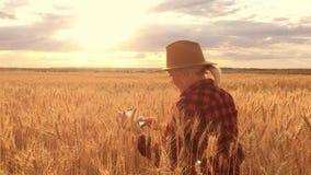 De agronoom registreert en bekijkt de oogst van tarwe Het schrijven gegevens aan de tablet stock footage