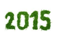 2015 de agulhas spruce Fotos de Stock