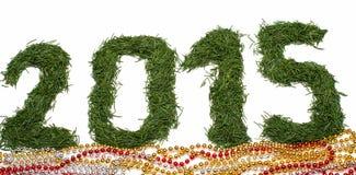 2015 de agulhas spruce Fotografia de Stock Royalty Free