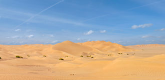 De Al Khali van de Oneffenheid Woestijn Stock Afbeeldingen