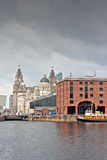 De Albert Dock och leverbyggnaderna Liverpool UK arkivfoto
