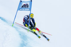 DE ALIPRANDINI Luca in Audi Fis Alpine Skiing World-Kop Men's Stock Fotografie
