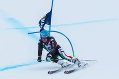 DE ALIPRANDINI Luca (ITA). Alta Badia, ITALY 22 December 2013. DE ALIPRANDINI Luca (ITA) competing in the Audi FIS Alpine Skiing World Cup MEN'S GIANT SLALOM Stock Image