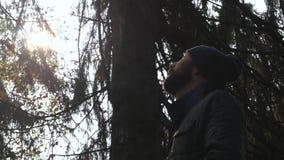 De alleen mens kijkt opstaand in bos stock videobeelden