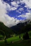 De alpen Stock Foto's