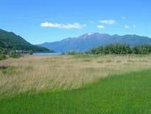 De Alpen en de weiden van Switss stock foto
