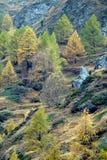De Alpiene scène van de daling royalty-vrije stock fotografie
