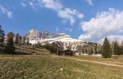De alpiene weide met krokussen voor Rosengarten groepeert ital Cima Catinaccio, Dolomiet, Italië royalty-vrije stock afbeelding