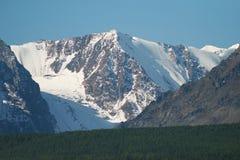 De Altai glaciärerna Arkivfoton