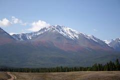 De Altai glaciärerna Arkivfoto