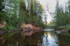 De Amata-rivier in het Nationale Park van Gauja Stock Afbeelding
