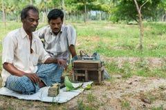 De ambulante fortuintellers gebruiken een papegaai Stock Foto's