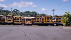 De Amerikaanse achtermening van de schoolbus op een rij Royalty-vrije Stock Afbeeldingen