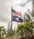 De Amerikaanse en Vlaggen van Guam met Palmen op de Achtergrond Stock Fotografie