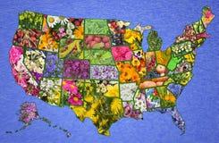 De Amerikaanse kaart van de V.S. van bloemen Stock Afbeelding