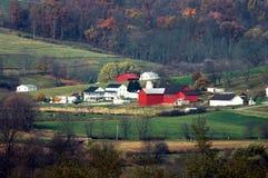 De Amerikaanse Scène van het Landbouwbedrijf stock afbeeldingen