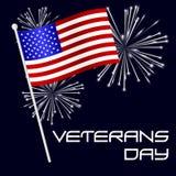 De Amerikaanse viering van de veteranendag met vlag en vuurwerk eps10 Stock Afbeelding