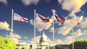 De Amerikaanse vlaggen fladdert in de wind op een zonsopgang tegen de blauwe hemel en het Capitool Het symbool van Amerika en stock video