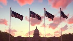 De Amerikaanse vlaggen fladdert in de wind op een zonsopgang tegen de blauwe hemel en het Capitool Het symbool van Amerika en stock footage
