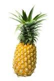 De ananas isoleerde 1 Stock Afbeeldingen