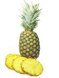 De ananas van de besnoeiing Royalty-vrije Stock Afbeelding