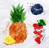 De ananas van de fruitwaterverf, braambes, rode aalbes Stock Afbeeldingen