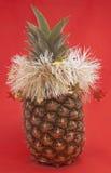De ananas van het nieuwjaar. Royalty-vrije Stock Fotografie